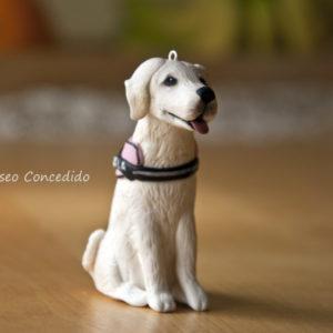 Labrador blanco